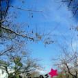 宮野入杏奈の画像