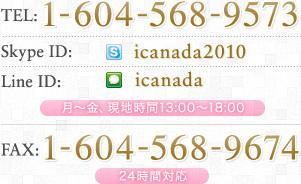 電話番号情報