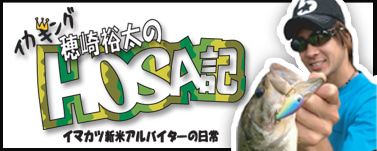 HOSA記