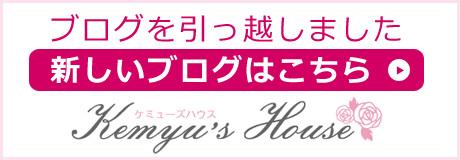 Kemyu's House-ブログを引っ越しました