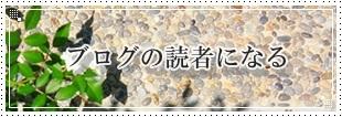 $bloom in my garden ~花咲くわたしの庭~-読者登録してね